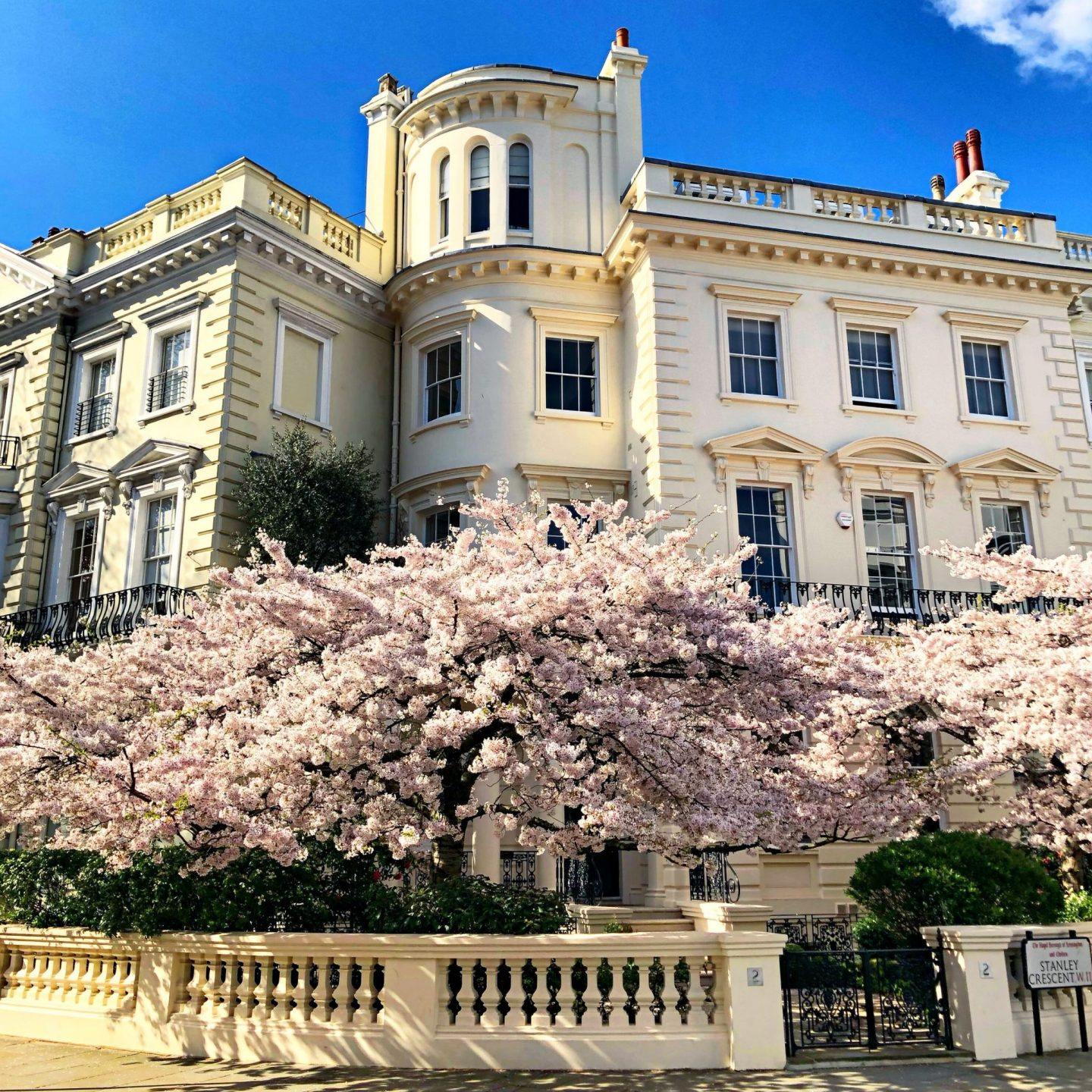 best-blossom-in-london